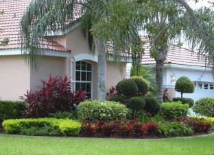 Cute Palm Gardening Ideas For Front Yard 26