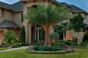 Cute Palm Gardening Ideas For Front Yard 30