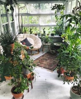 Magnificient Indoor Decorative Ideas With Plants 17