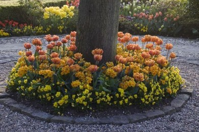 Adorable Flower Beds Ideas Around Trees To Beautify Your Yard 17