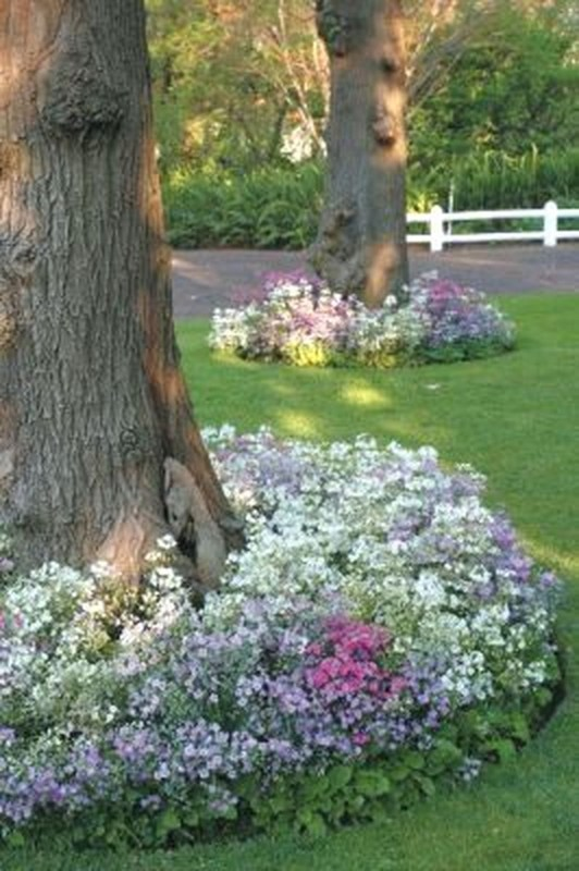 Adorable Flower Beds Ideas Around Trees To Beautify Your Yard 26