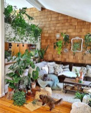 Rustic Houseplants Design Ideas That Are Safe For Animals 33