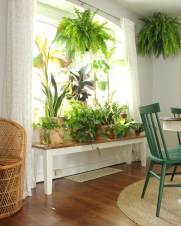 Lovely Window Design Ideas With Plants That Make Your Home Cozy 18