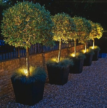 Pretty Christmas Front Yard Landscaping Ideas38