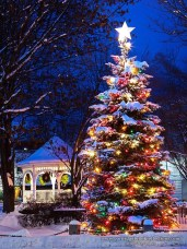 Vintage Outdoor Winter Lights Decoration Ideas35