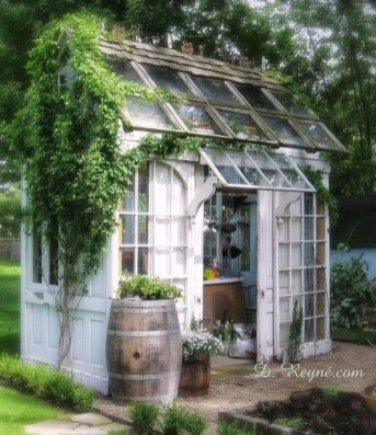 Awesome Shed Garden Plants Ideas04