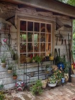 Awesome Shed Garden Plants Ideas11