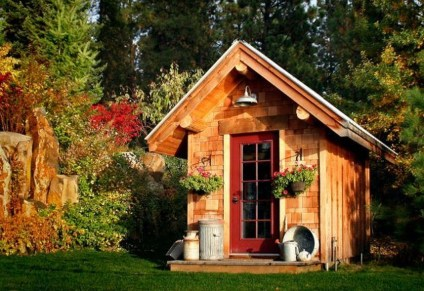 Awesome Shed Garden Plants Ideas15