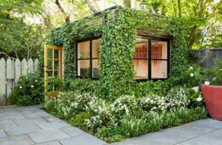 Awesome Shed Garden Plants Ideas35