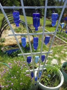 Amazing Glass Garden Ideas36