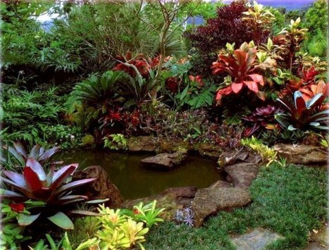 Wonderful Tropical Landscaping Ideas For Garden05
