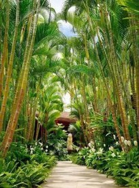 Wonderful Tropical Landscaping Ideas For Garden24