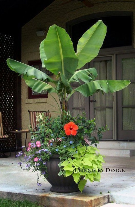 Wonderful Tropical Landscaping Ideas For Garden34