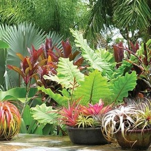 Wonderful Tropical Landscaping Ideas For Garden36