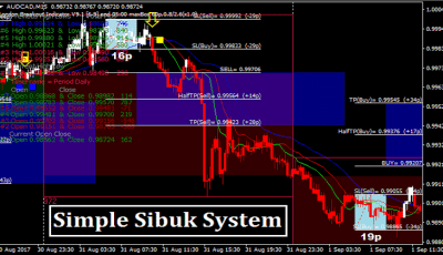 Forex boat simple system