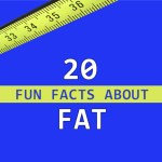 20 Fun Facts About Fat