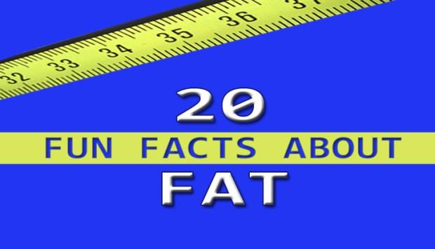 20 Fun Facts Fat bloghdr