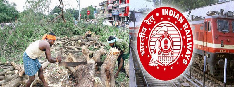 online rail exam to save tree