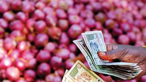 centre will start to distribute onions to state at fair price