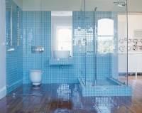 Light Blue Tile Bathroom of Apartment Jane