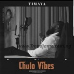 MUSIC: Timaya – Stoopid