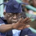 News: Support Lawan and Gbajabiamila Or Leave APC – Tinubu Blows Hot