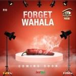 Gist: Big Brother Naija Season 4 Date Has Been Announced