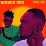 Ajebutter 22 – Ginger You Ft. Mayorkun