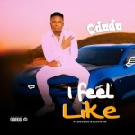 Odudu - I Feel Like (Prod. 2spoon)