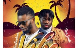 BlacknShine Ft. Don Jude – Vibe