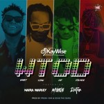 DJ Kaywise Ft. Mayorkun, Naira Marley & Zlatan – What Type Of Dance