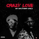 Skyboy Ft. Terry Apala - Crazy Love