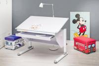 Kinderschreibtisch VARIO wei verstellbar mit Schublade