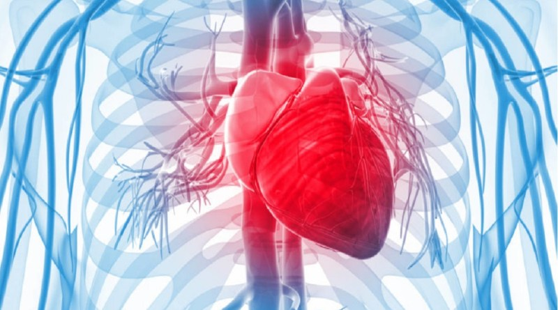 heart attack - 2018 - early signs of heart diseases - avoid signs - TrendMut