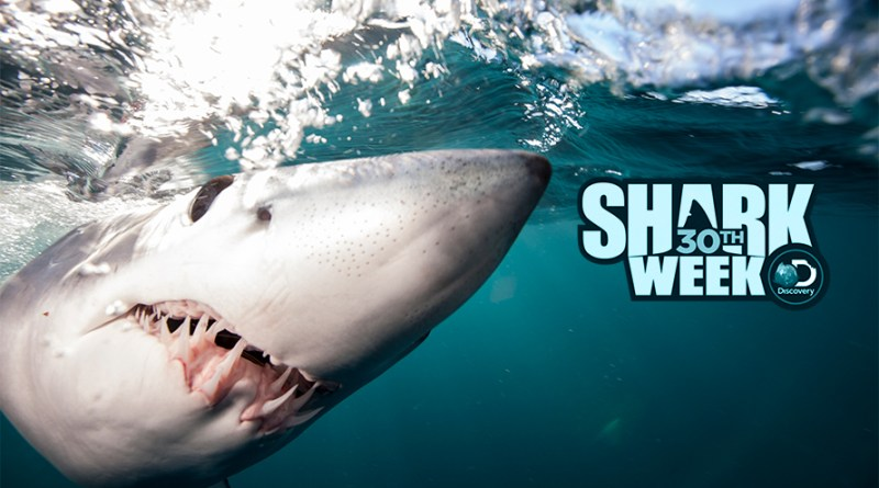where to watch shark week 2018 online