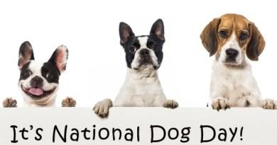 happy national dog's day 2018