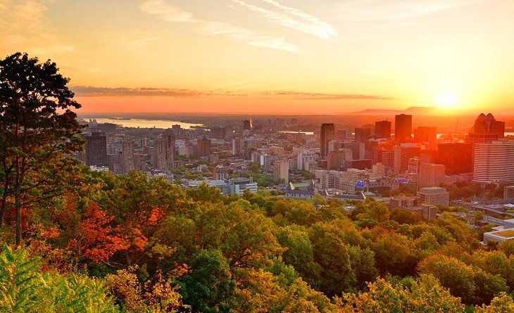 Picnic Spots in Montreal
