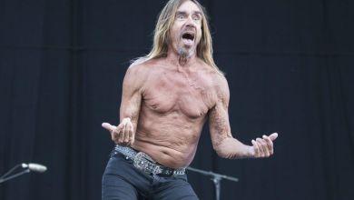 Photo of Iggy Pop lanzará nuevo álbum 'Free'