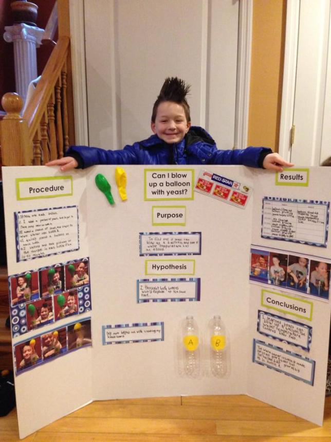 jd science project