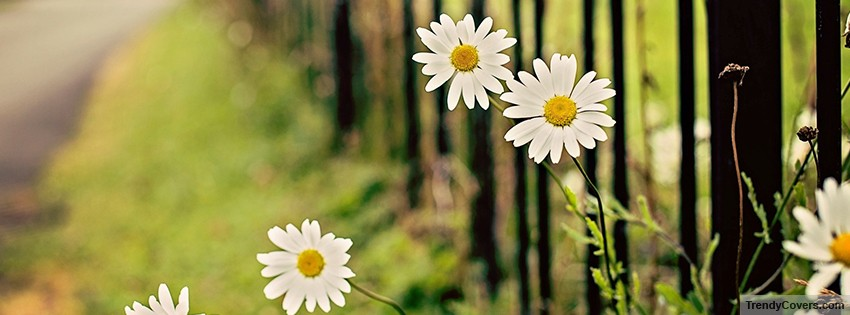 Sweet Indian Baby Girl Wallpaper Nature Facebook Covers Trendycovers Com