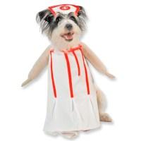 Nurse Dog Costumes | DoggieChecks.com