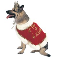 King Dog Costumes | DoggieChecks.com