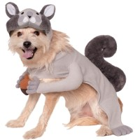 Squirrel Pet Costume - 392206 | trendyhalloween.com