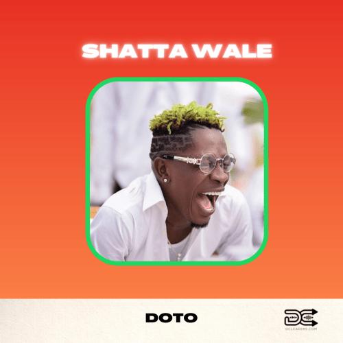Shatta Wale Doto cover art 1
