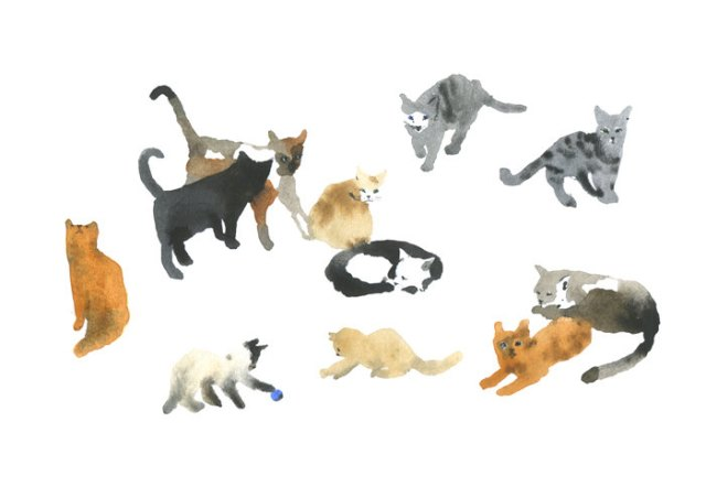 Etsy - Eleven Cats
