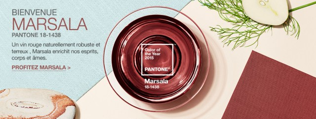 Pantone_Color_of_the_Year_Marsala_Slide_FR
