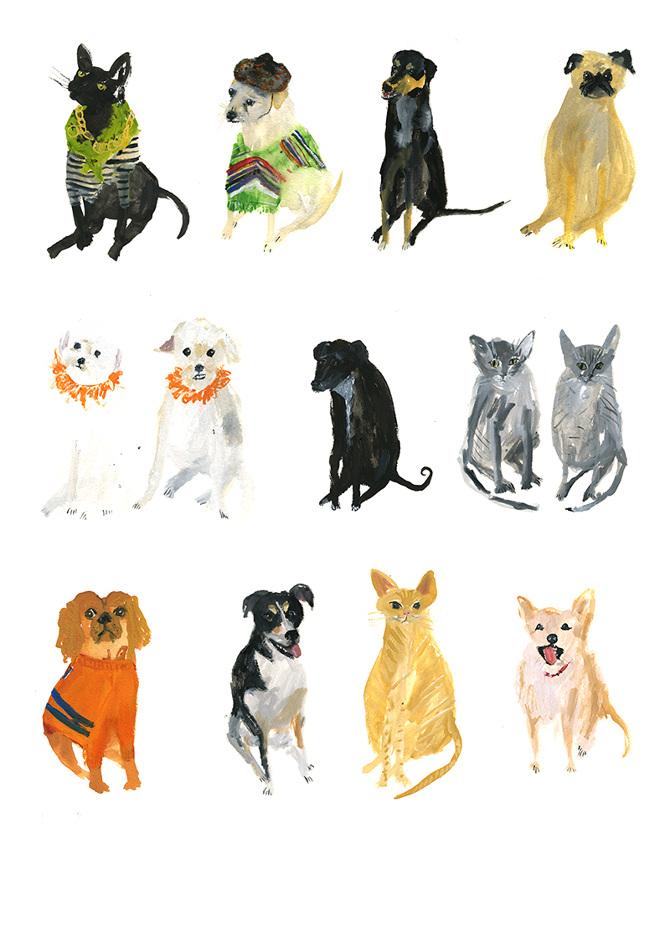 Faye Moorhouse - Pet Portraits