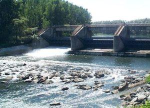 Garantire la sopravvivenza dei fiumi e non solo i profitti dei gestori dell'idroelettrico