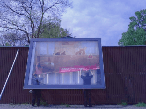 Telekom Treueprogramm