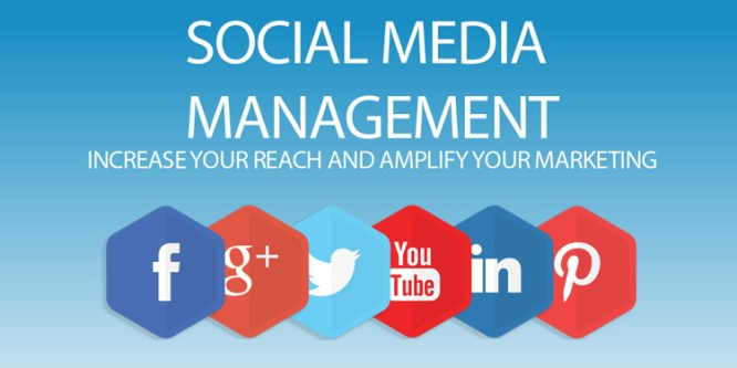 TrevPAR World Social Media Management